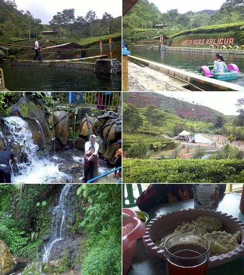 cakpoercom - spot wisata kebun teh kaligua